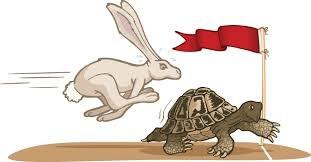 Come risolvere i problemi in azienda: lo slow-management di chi punta lontano